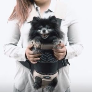 YAP Sak Dog Carrier for Small Dogs